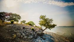 Südschweden: Gotland und Fårö im Süden von Schweden